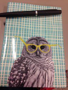 Carnet d'écrivaine hibou à lunettes