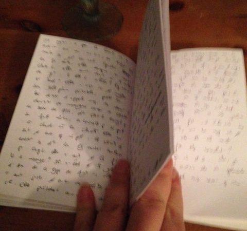 Mon carnet d'écrivaine